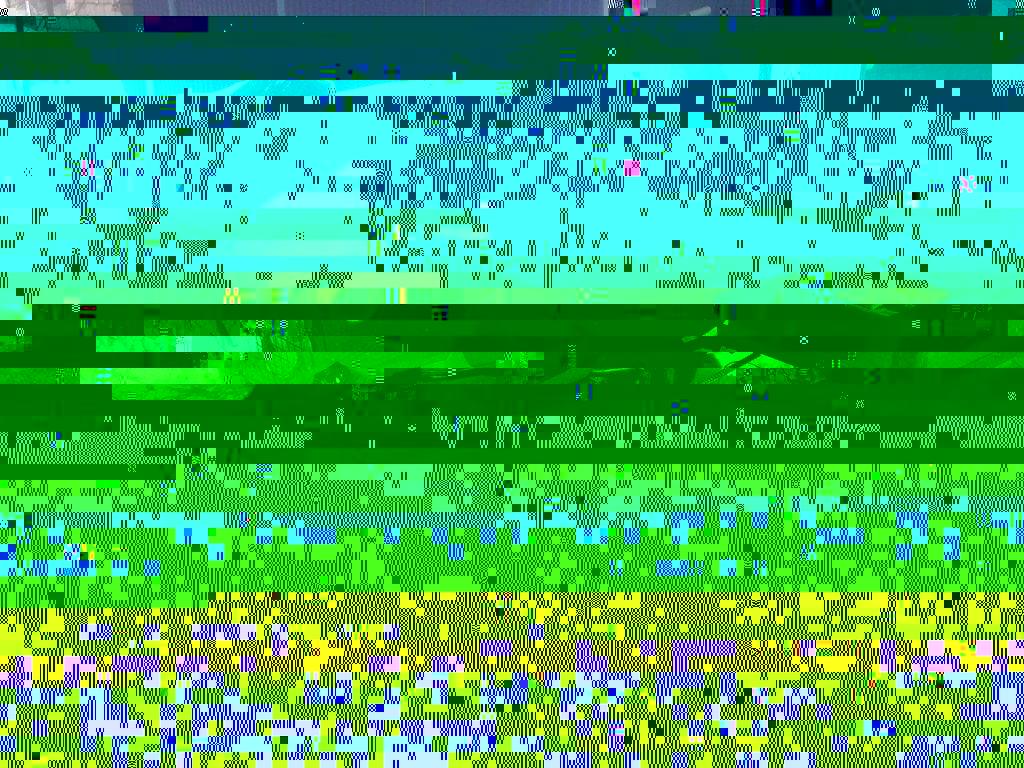 30032011656.jpg